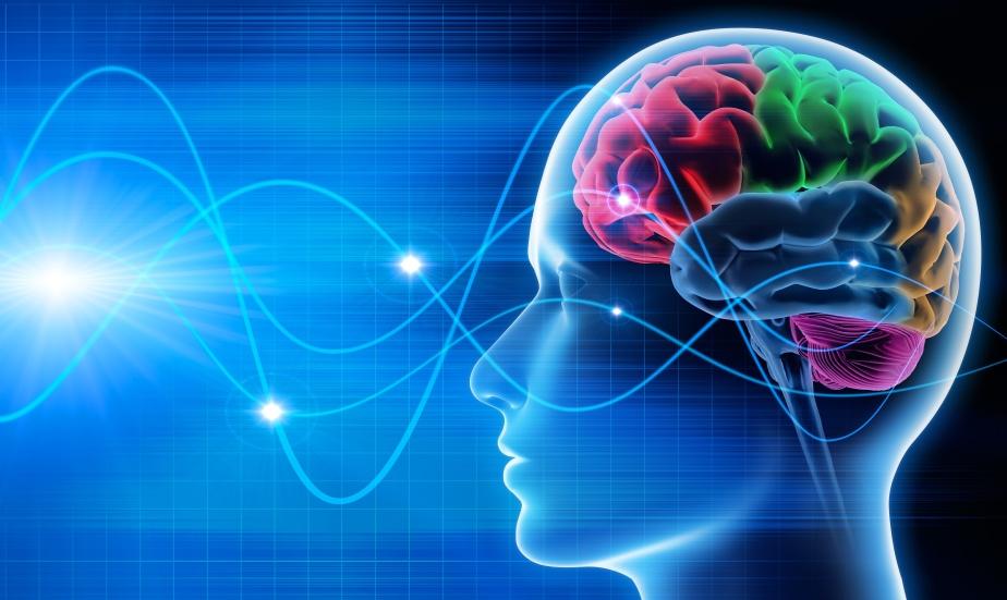 T.M.O. (Thérapie par les Mouvements Oculaires) et D.M.K.A (Déprogrammation par les Mouvements Oculaires, Kinesthésiques etAuditifs)